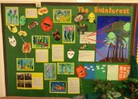 'The Rainforest' - Class 9