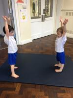 Aut 2: 'Mirror Mirror' game - working with a partner - mirroring their gymnastic shapes.