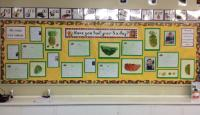 'Have you had your 5 a day?' - Class 7