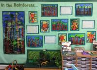 In the Rainforest - Class 9