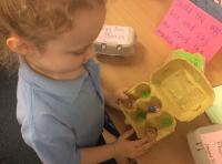 Spr 1: Egg Box Phonics - Phase 3 sounds.