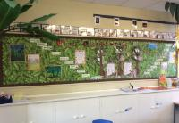 The Rainforest - Class 7